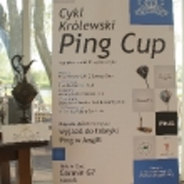 pingcup-090515-270