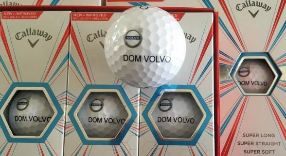 Piłeczki_logo Dom Volvo_02a_min
